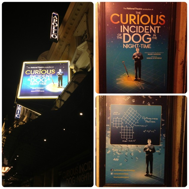 The curious incident 1